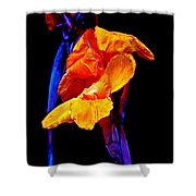 Canna Lilies On Black With Blue Shower Curtain