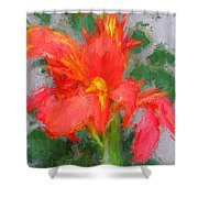 Canna Lily 3 Shower Curtain