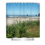 Cannon Beach And Purple Bloom Shower Curtain