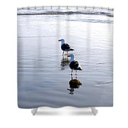 Cannon Beach Buddies Shower Curtain
