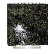 Cannon Beach Creek Shower Curtain
