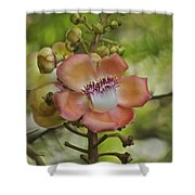 Cannonball Blossom Shower Curtain