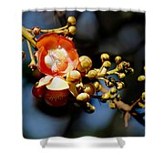 Cannonball Flower Shower Curtain