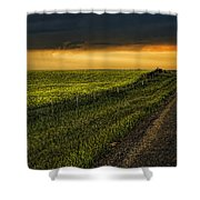 Canola And The Road Ahead Shower Curtain