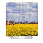 Canola Field Shower Curtain