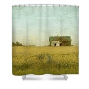 Canola Field Of Dreams Shower Curtain