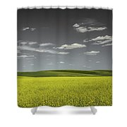 Canola Hills And Dales Shower Curtain