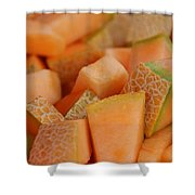 Cantaloupe II Shower Curtain