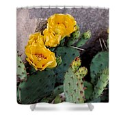 Cantankerous Cactus Shower Curtain