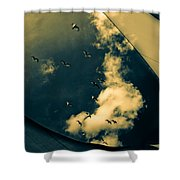 Canvas Seagulls Shower Curtain