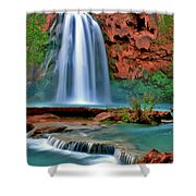 Canyon Falls Shower Curtain by Scott Mahon