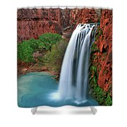 Canyon Falls Vertical Shower Curtain