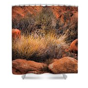 Canyon Grasses Shower Curtain
