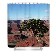 Canyon Impression Shower Curtain