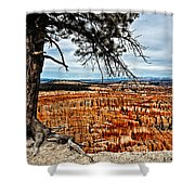 Canyon Overlook Shower Curtain