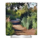 Canyon Path II Painterly Shower Curtain