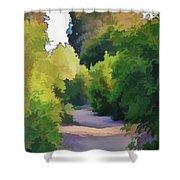 Canyon Path IIi Painterly Shower Curtain