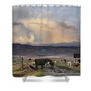 Canyon Road 2 Shower Curtain