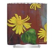 Canyon Sunflower Shower Curtain