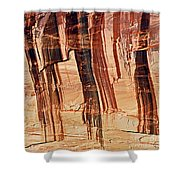 Canyon Textile Design Shower Curtain
