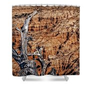 Canyon View Nevada Shower Curtain