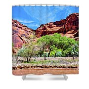 Canyon Wall. Shower Curtain