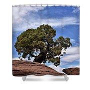 Canyonlands Tree Shower Curtain