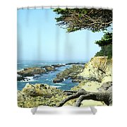 Cape Arago, Or. Shower Curtain