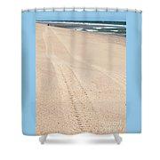 Cape Cod Beach With Tire Tracks Shower Curtain