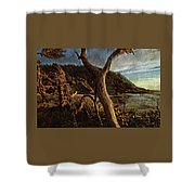 Cape Perpetua Sunset Shower Curtain