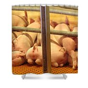 Capitalist Swine Shower Curtain