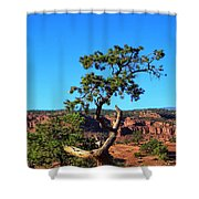 Capitol Reef 6 Shower Curtain