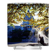 Capitol View Shower Curtain