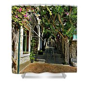 Capri Street Shower Curtain