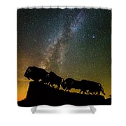 Caprock Canyon Bison Stars Shower Curtain