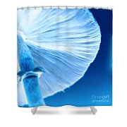 Captastic Shower Curtain