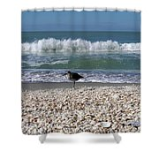 Captiva Island II Shower Curtain