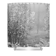 Capture Me Misty Shower Curtain