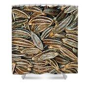 Caraway Seeds Shower Curtain