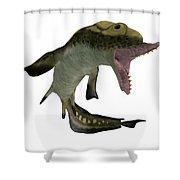 Carboniferous Edestus Shark Shower Curtain