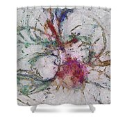 Carbonify Placing  Id 16098-041039-61930 Shower Curtain