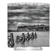 Cardiff Bay Dolphins Mono Shower Curtain