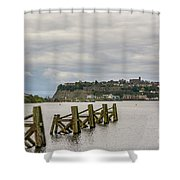 Cardiff Bay Dolphins Shower Curtain