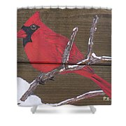Cardinal 2 Shower Curtain
