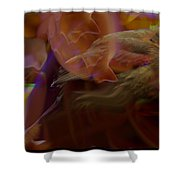 Cardinal And Abstract Shower Curtain