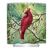 Cardinal Shower Curtain by David G Paul