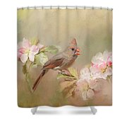 Cardinal Delight Shower Curtain