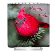 Cardinal Happy Holidays Shower Curtain