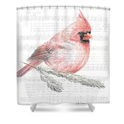 Cardinal On Joy To The World Shower Curtain