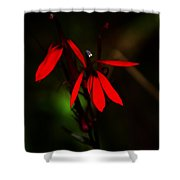 Cardinal  Plant Shower Curtain